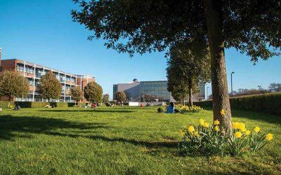 Verano Irlanda – Dublin City University (Curso de inglés – residencia o familia)