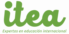 Expertos en educación internacional